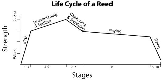 life-cyclelg2
